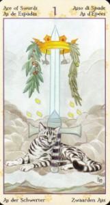 boi-tarot-1