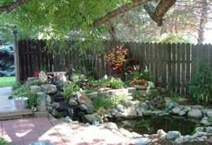 Phong thủy bố trí bể nước trong sân vườn để mang lại may mắn