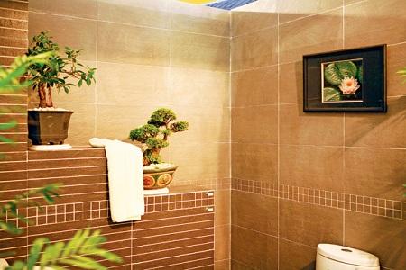 Đối với những ngôi nhà có diện tích hẹp. Bạn chỉ cần dời vị trí bồn cầu trong phòng vệ sinh chệch khỏi hướng cũ 15 độ là sửa được phương vị của phòng vệ sinh sang một hướng mới.